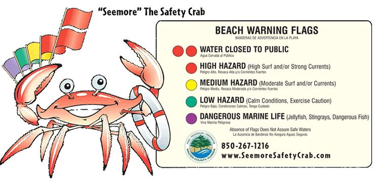 seemore safety crab